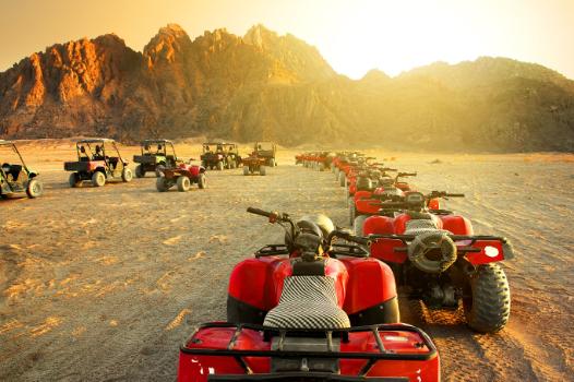 Grand Safari : 7 heures dans le désert